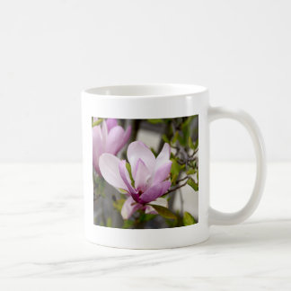 Árbol de tulipán taza