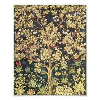 Árbol de William Morris del Pre-Raphaelite del vin Fotografias