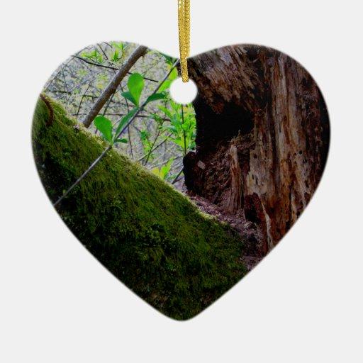 Árbol de Yin Yang Adornos