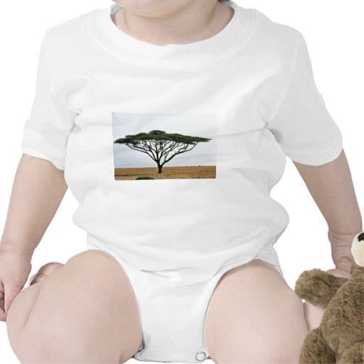 Árbol del acacia de la espina del paraguas camisetas