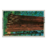 Árbol del boy scout en la secoya HighwayRedwoods,  Póster