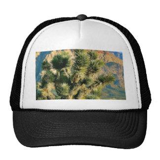 Árbol del cactus gorro de camionero