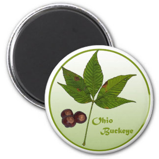 Árbol del castaño de Indias de Ohio Imán Redondo 5 Cm