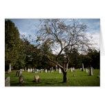 Árbol del cementerio tarjeta pequeña