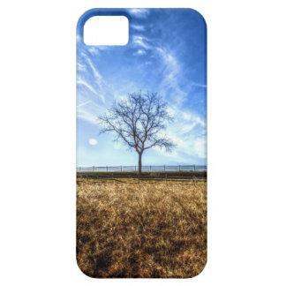 Árbol del cielo azul funda para iPhone SE/5/5s