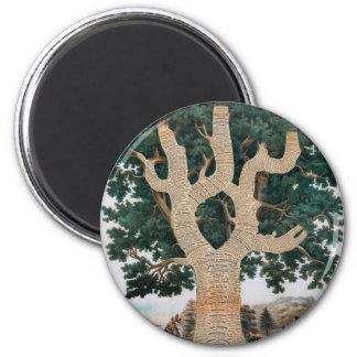 Árbol del conocimiento imán redondo 5 cm