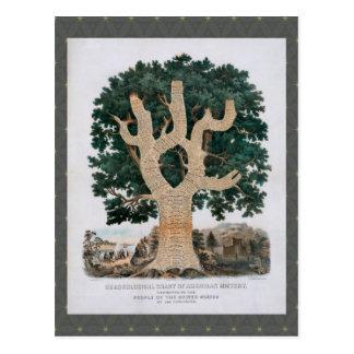 Árbol del conocimiento postal
