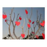 Árbol del corazón postal