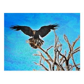 Árbol del cuervo postales