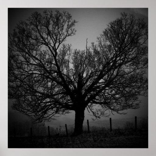 árbol del fantasma posters