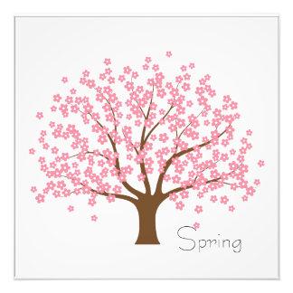 Árbol del flor de la primavera fotografías