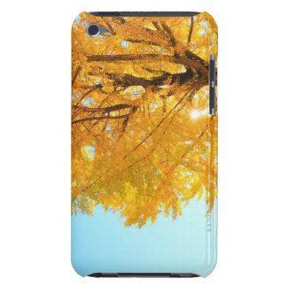 Árbol del Gingko, prefectura de Nagano, Japón Funda iPod