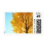 Árbol del Gingko, prefectura de Nagano, Japón Sellos Postales