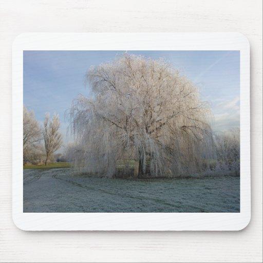 Árbol del invierno alfombrilla de ratón