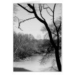 Árbol del invierno - Central Park NYC Felicitaciones