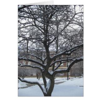 Árbol del invierno en RPI Tarjeta De Felicitación