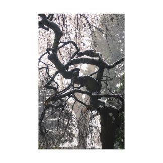 Árbol del invierno impresiones de lienzo