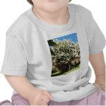 Árbol del jazmín en la floración camisetas
