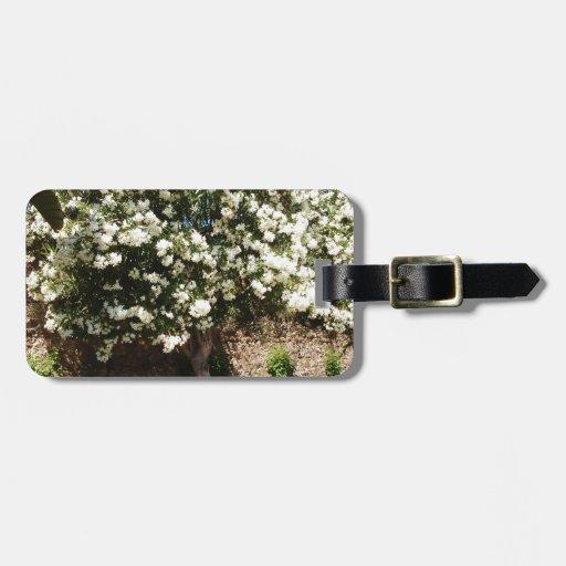 Árbol del jazmín en la floración etiqueta de equipaje