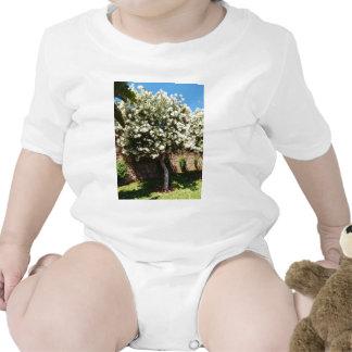 Árbol del jazmín en la floración camiseta