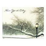 árbol del nyc de Central Park Postales