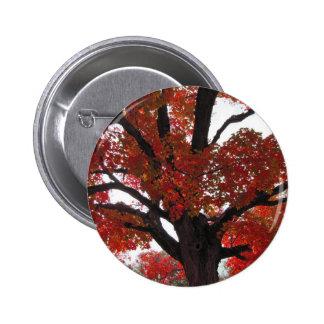 Árbol del otoño con las hojas intrépidas del chapa redonda 5 cm