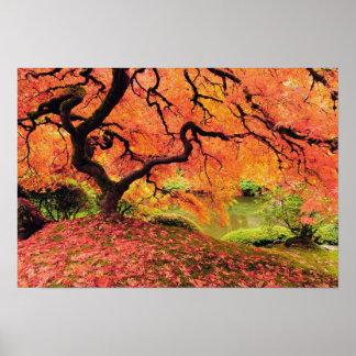 Árbol del otoño impresiones