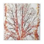 Árbol del otoño tejas  cerámicas