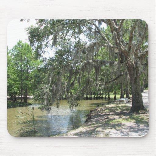 Árbol del pantano, isla de Avery, Luisiana Tapetes De Ratones