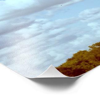 Árbol del parque de estado del lago Shabbona e Fotografía