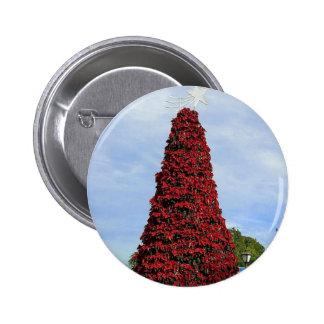 Árbol del Poinsettia del navidad en San Diego Pins