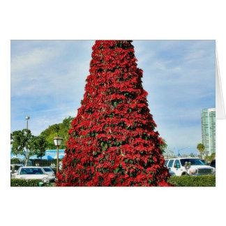 Árbol del Poinsettia del navidad en San Diego Tarjeta