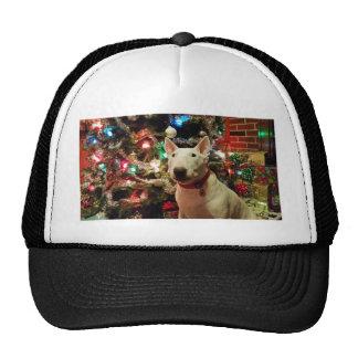 árbol del regalo de Navidad de bull terrier Gorro De Camionero
