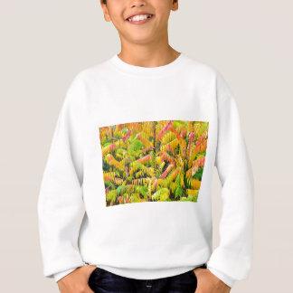 Árbol del terciopelo en colores del otoño sudadera