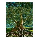 Árbol del verde de la vida postal