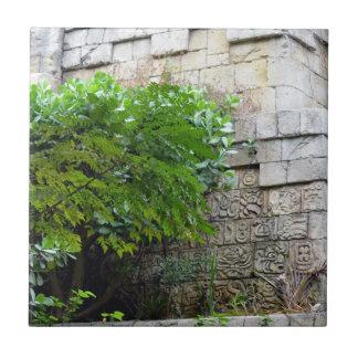 árbol delante del edificio azteca de la reproducci teja  ceramica
