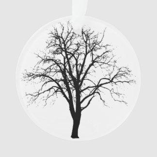 Árbol deshojado en silueta del invierno