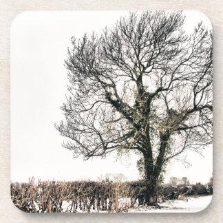 Árbol desnudo en la nieve posavaso