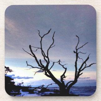 Árbol desnudo en orilla en la puesta del sol posavasos