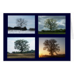 Árbol en 4 estaciones tarjeta de felicitación