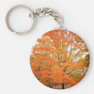 Árbol en Central Park, New York City del otoño Llavero Redondo Tipo Pin