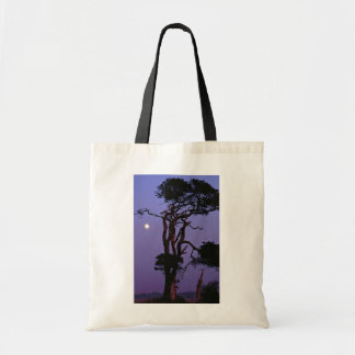 Árbol en claro de luna, llano de Salisbury, Wiltsh Bolsa De Mano