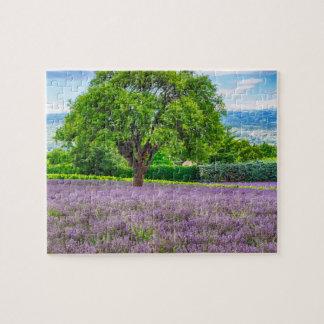 Árbol en el campo de la lavanda, Francia Puzzle