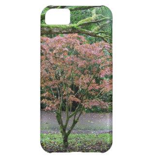 Árbol en el castillo de la lisonja de la floración funda para iPhone 5C