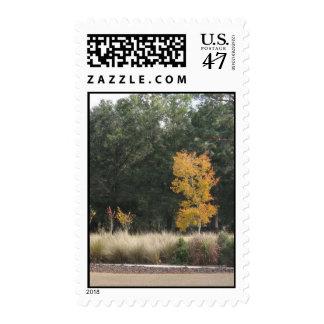 Árbol en el sello del parque de Sholom