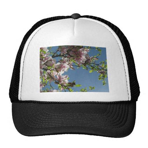 Árbol en flor gorro