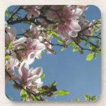 Árbol en flor posavaso