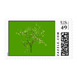 Árbol en fondo verde franqueo