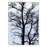Árbol en invierno tarjetón