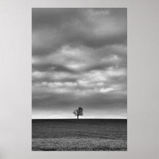 Árbol en la colina póster